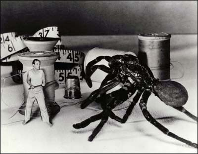 The-Incredible-Shrinking-Man-image